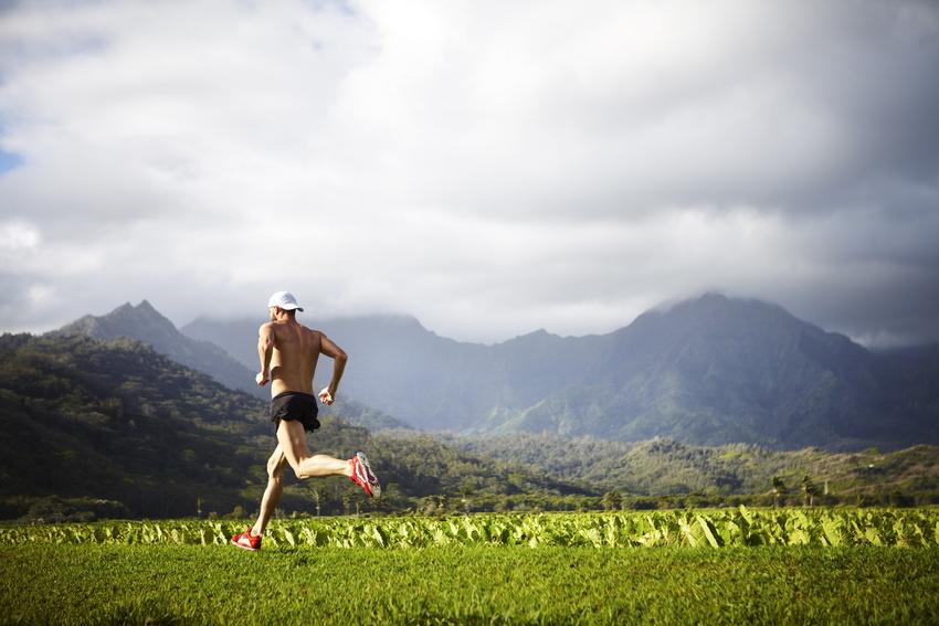 Hawaii Run